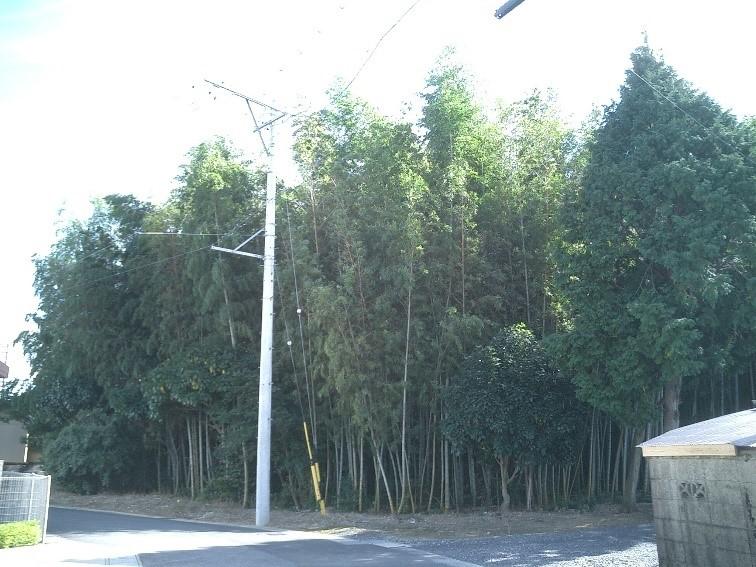 三重県亀山市羽若町:山林